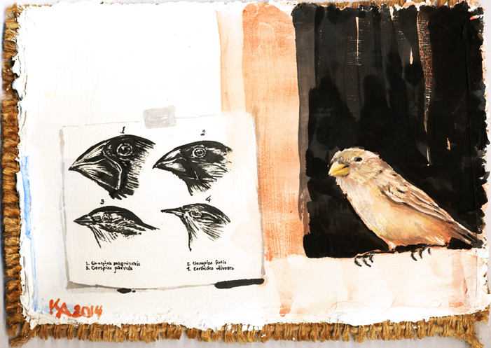 "Among Darwin's Finches, ""I am No. 3"""