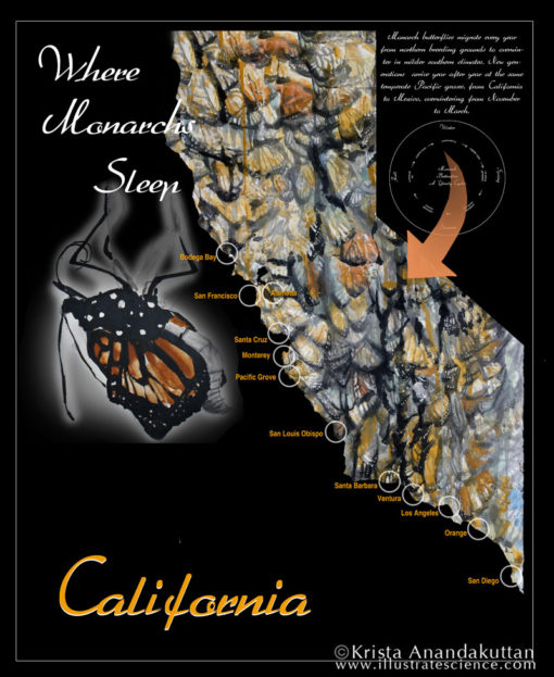 Map: Monarchs in CA